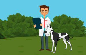 רופא וכלב